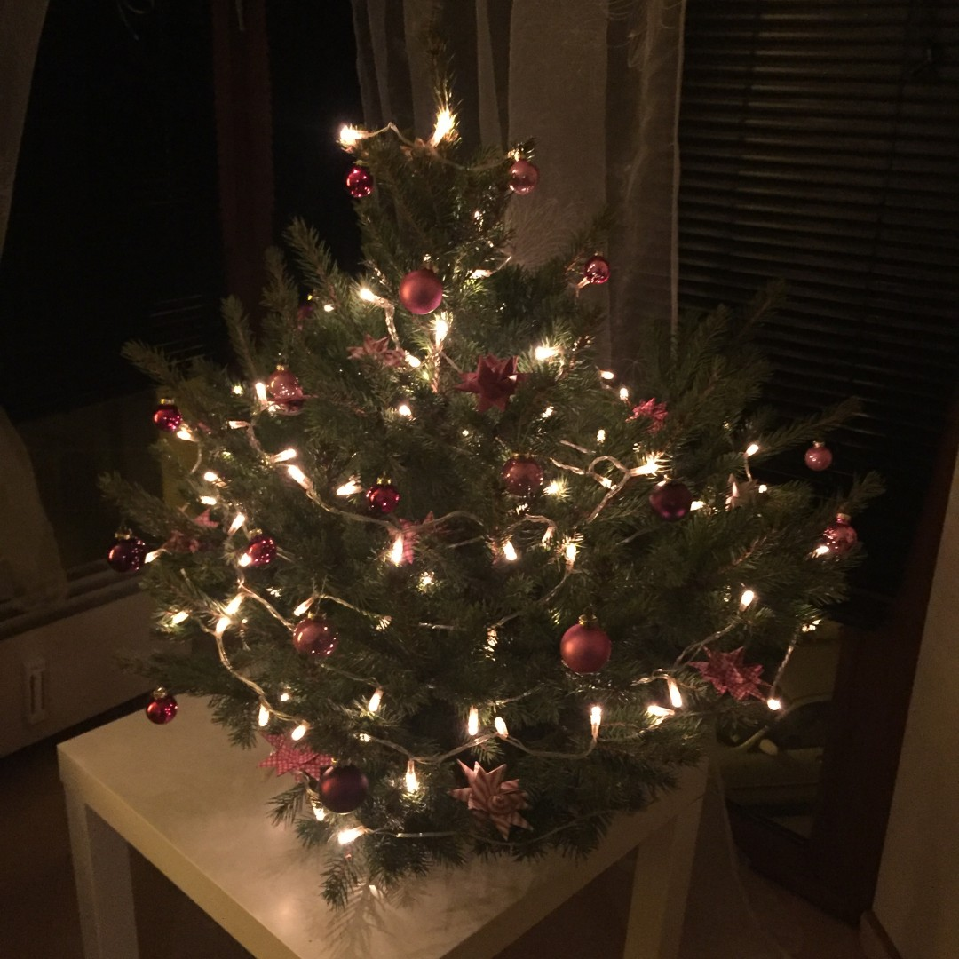 Stupsi - unser erster gemeinsamer Baum :-)