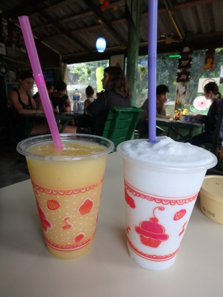 Ananas-Shake & Kokosnuss-Shake