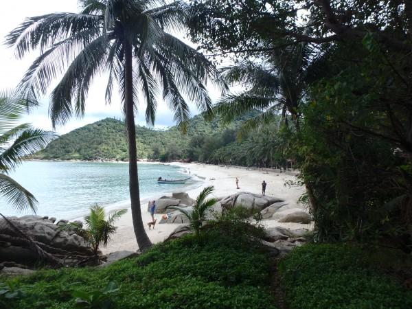 Durch die Palmen blitzte uns der Strand entgegen.