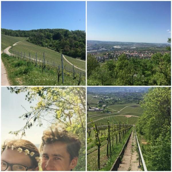 Wanderung in den Weinbergen Fellbachs